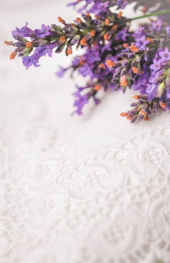Lavendar and Linen 1