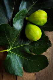 Figs and leaves 2