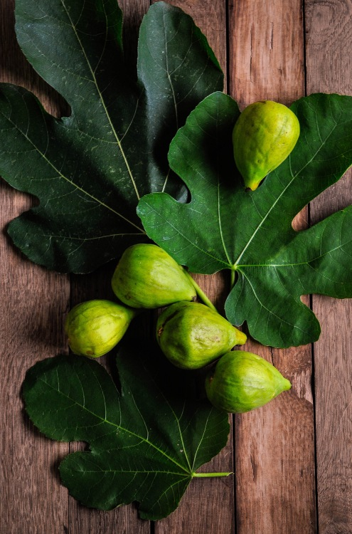 Figs and leaves 5