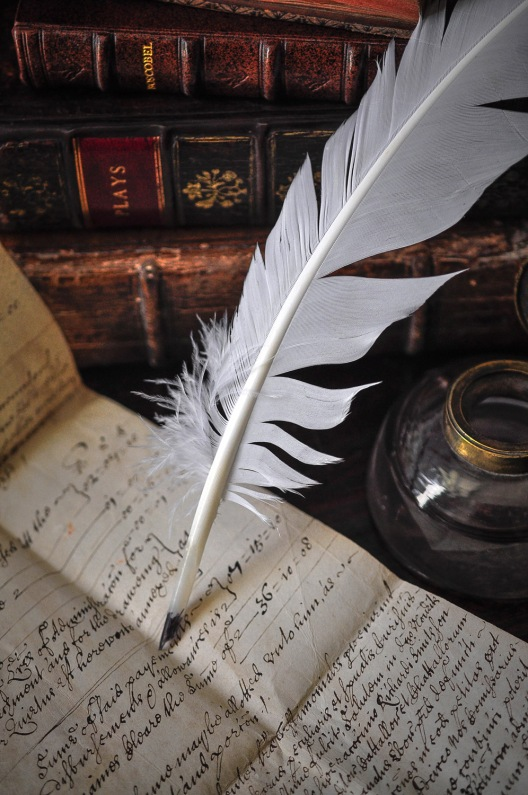 Parchment and quill 5