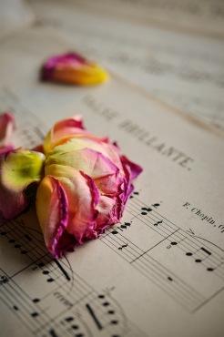 Chopin Valse Brillante Rose