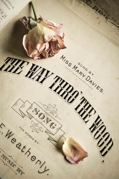 The Way thru the Wood_