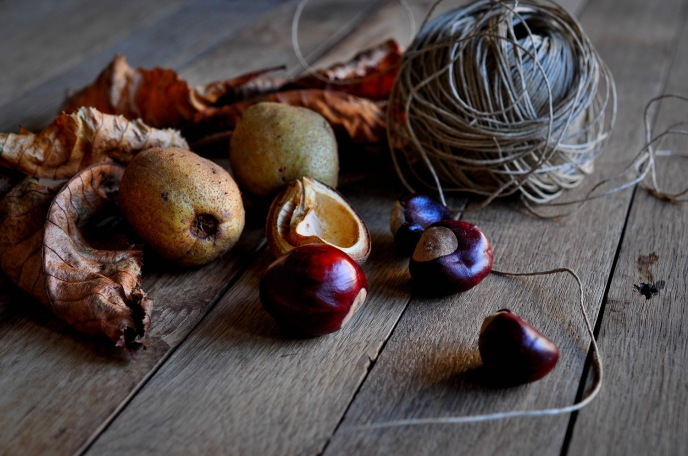 Conkers Leaf String