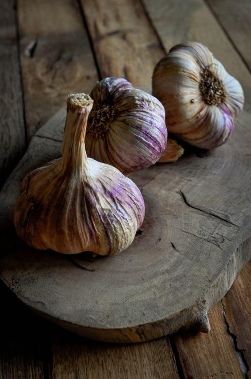 Rose Garlic 3