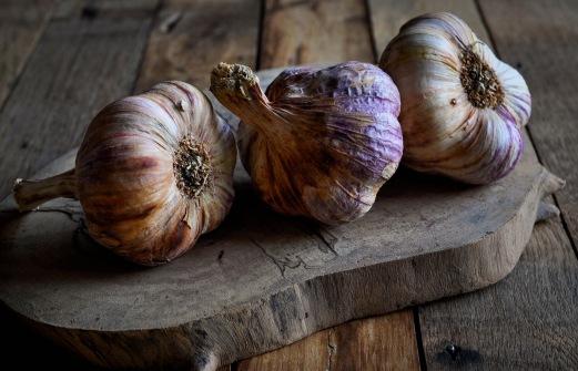 Rose Garlic 4