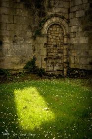 Abbey Ruins 3