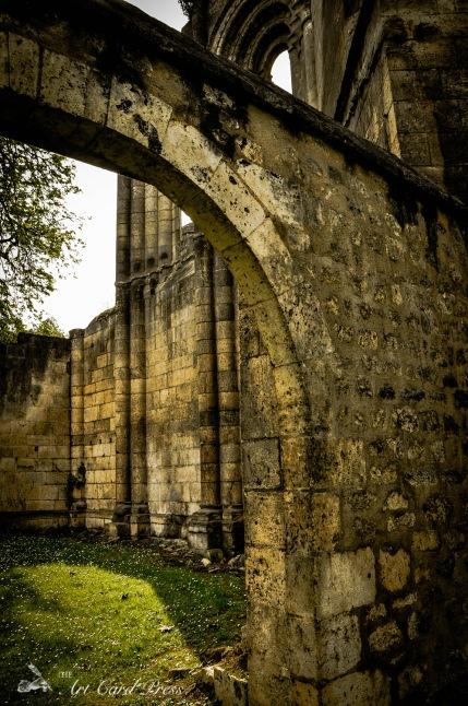 Abbey Ruins 4