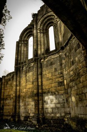 Abbey Ruins 5