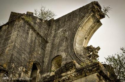 Abbey Ruins 9