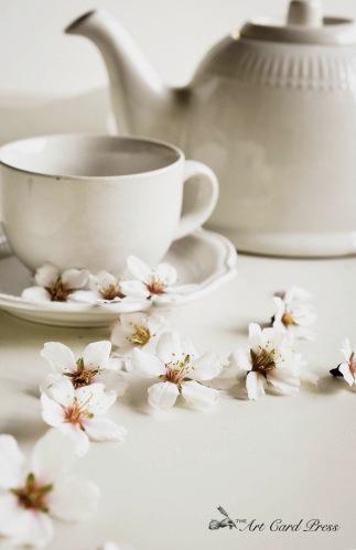 Almond Blossom 10-001