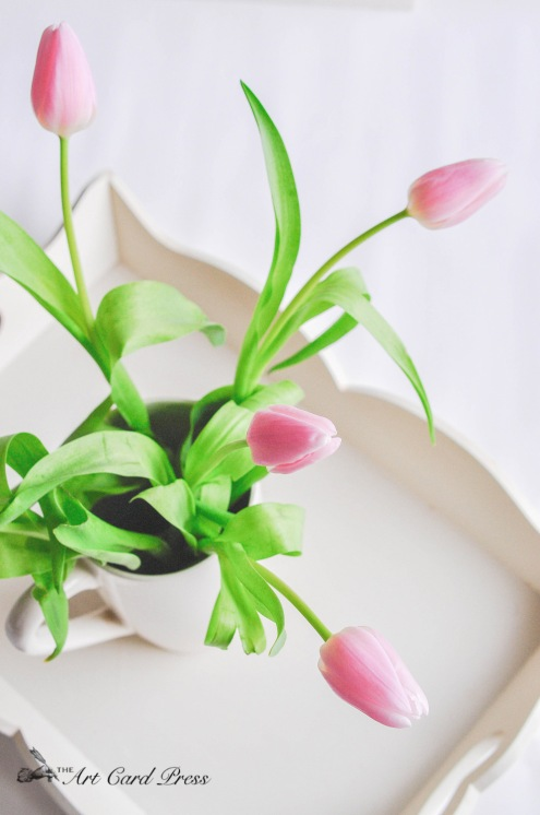 Pink Tulips 10-001