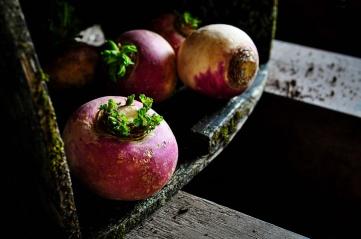Turnips 3