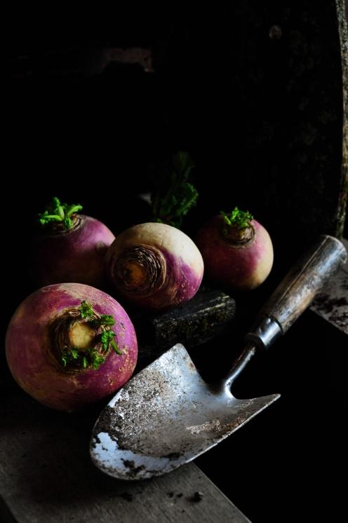 Turnips 7