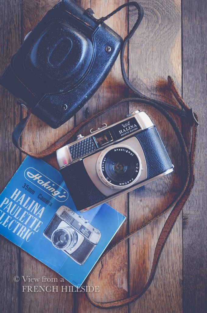Halina camera 6