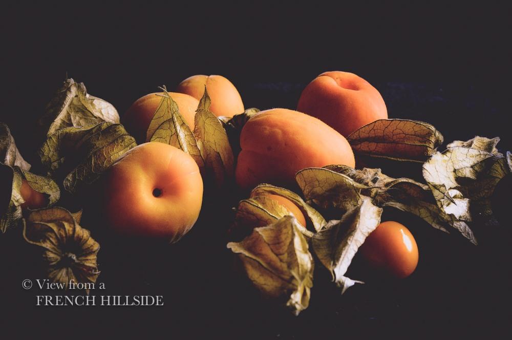 Black Fruit_-13