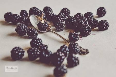 Blackberries 2-2