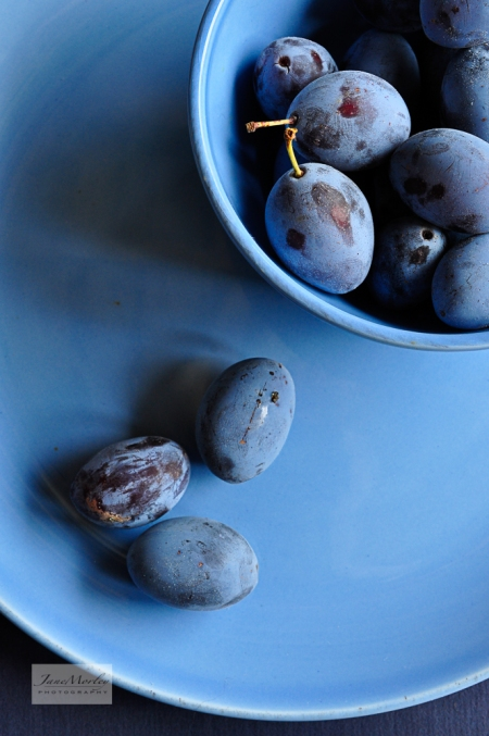Blue Damsons unedited