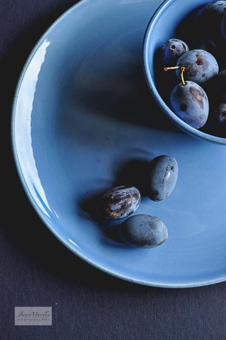 Blue Damsons