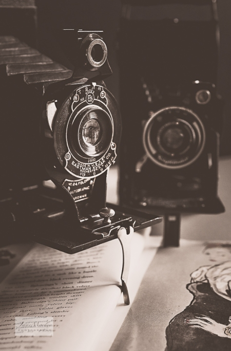 Kodak & Voigtländer