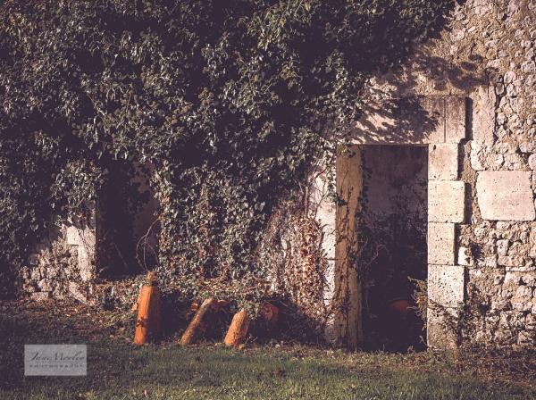 Ruined cottage door & window 2