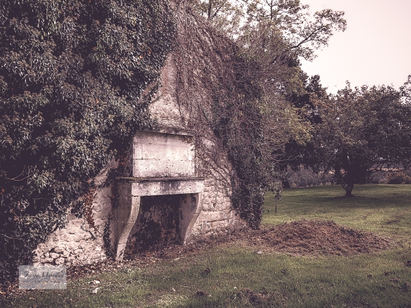 Ruined house fireplace 3