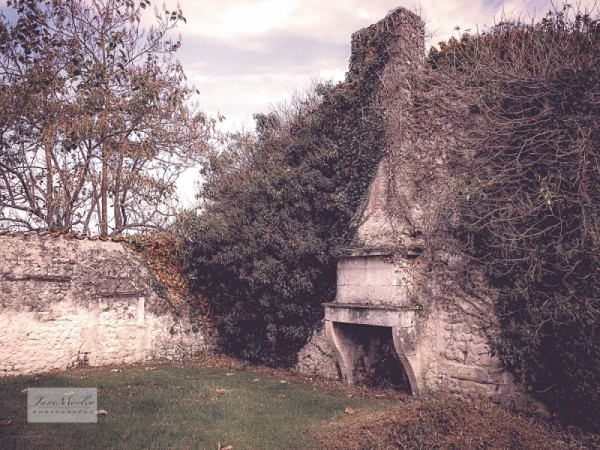 Ruined house fireplace 5