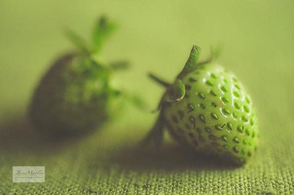 Green strawberries 8