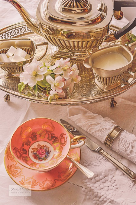 Salmoon cup and silver tray 2
