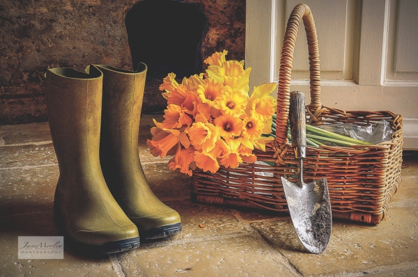 Daffodils and wellies